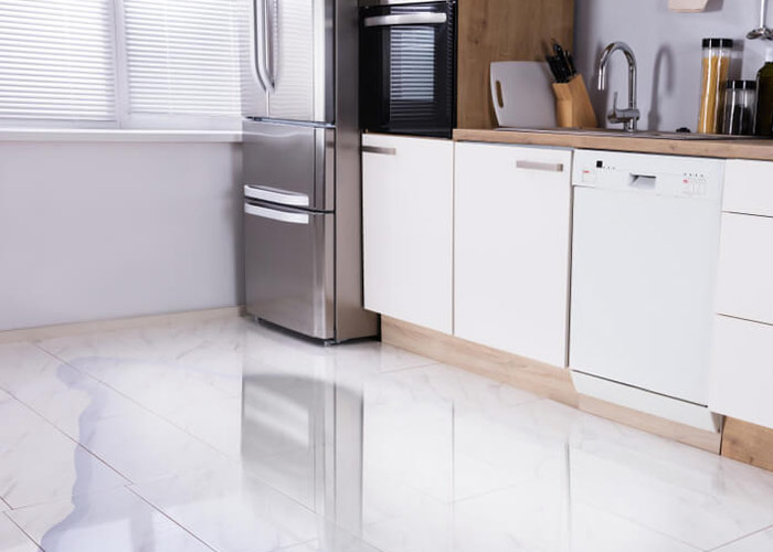 Dishwasher Leak & Overflow Cleanup in Detroit, MI