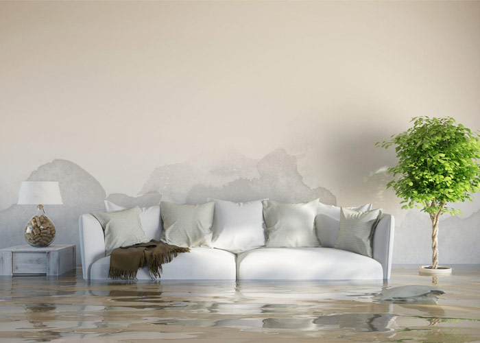 Water Damage Insurance Claim Assistance in Detroit Metro Area and Southeast Michigan