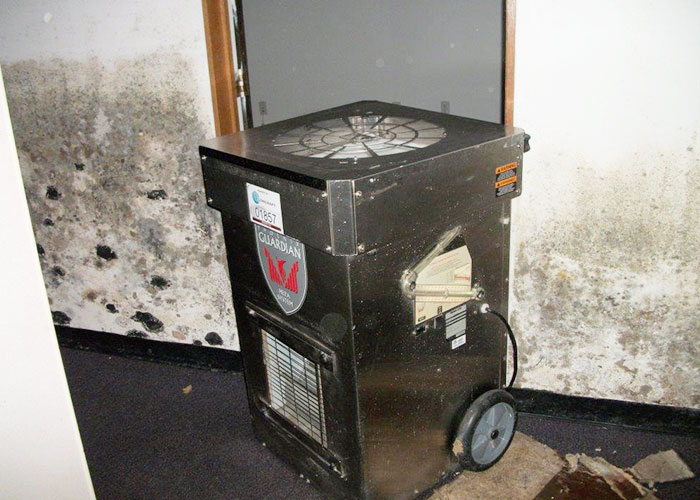Concraft: More than Mold Remediation in Southeast Michigan