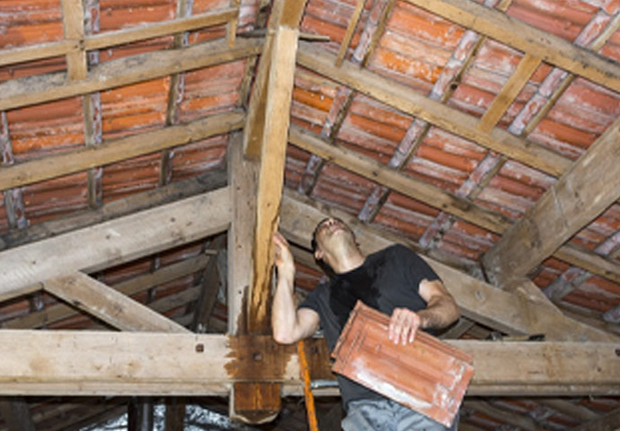 Attic Water Damage Restoration